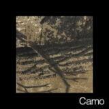 swatch_camo