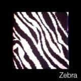 swatch_zebra